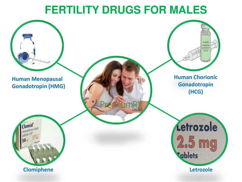 men fertility drugs